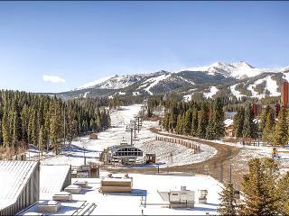 Fantastic Views - Central Location (4221) - Breckenridge vacation rentals