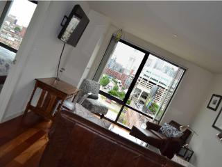 Canal Street Luxury West End / North End + Views - Boston vacation rentals