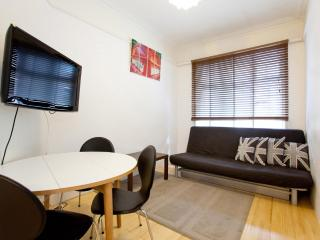 3 Studio - walking distance to Piccadilly Circus! - London vacation rentals