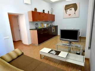 161, 4 Sofievskaya, Luxury 1-bedr., Maydan - Ukraine vacation rentals