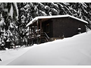 Chata Karolínka 0432 - Horní Becva-Beskydy-ČR - Horni Becva vacation rentals