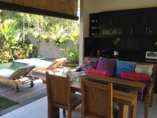 Yogi's Gem! Modern, POOL, Wifi, AC - Ubud vacation rentals