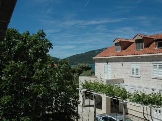 Apartments KRILE - vacation in nature - Prvic Luka vacation rentals