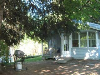 Rustic Lake Cottage - Capital Saratoga vacation rentals