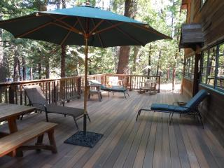 Perfect Cabin with Deck and Internet Access - Twain Harte vacation rentals