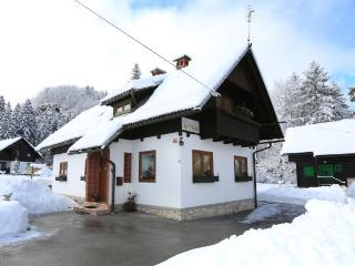 Nice Condo with Internet Access and Central Heating - Bohinjsko Jezero vacation rentals