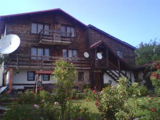 villa in rhodope mountain - Pamporovo vacation rentals