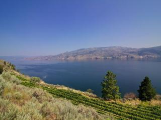 You wish you could stay forever! Lake shore B&B. - Summerland vacation rentals