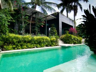 Bright Villa with Deck and Internet Access - Canggu vacation rentals