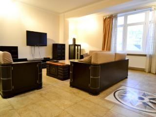 316, Center, New Building, Super VIP - Kiev vacation rentals