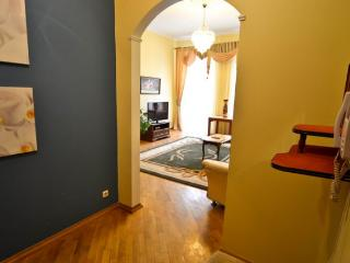 194, Great location in city center, with Jacuzzi - Chornobyl vacation rentals