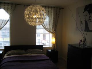 Beautifully Renovated 2-Bedroom Apt, 15 min to NYC - New York City vacation rentals