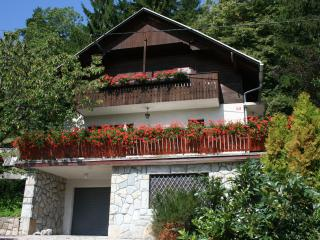 Holiday house Kristan, view on lake - Kranjska Gora vacation rentals