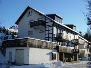 Relaxation appartements in the heart of the High-Sauerland - Mohnesee vacation rentals