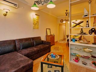 Nigar Palace, clean and cozy flat in Besiktas - Istanbul vacation rentals