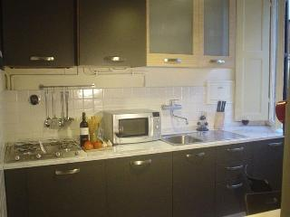 Great 2 Bedroom Apartment Rental in Florence Center - Florence vacation rentals