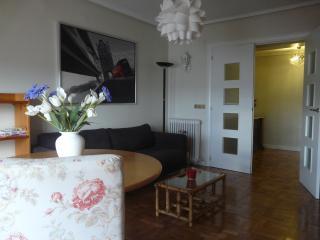 Apartment Marina de Pasaia - San Sebastian - Donostia vacation rentals