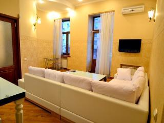 204, 1 Lva Tolstogo, 2-bedr., VIP - Kiev vacation rentals
