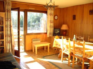 location montagnes - Taninges vacation rentals