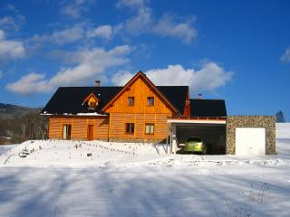 Holiday Home Dolni Morava, sauna, internet - Dolni Morava vacation rentals