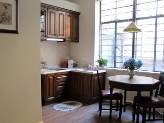 Luxury1 BR at city center, next to Xintiandi - Shanghai vacation rentals