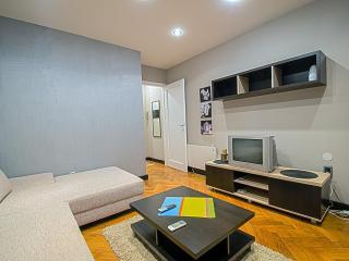 Entire apartment, flat in the center of Belgrade - Belgrade vacation rentals