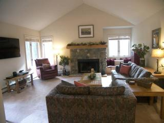 Cozy Condo with Internet Access and Hot Tub - Incline Village vacation rentals