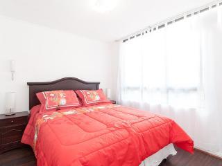 Apt in Lastarria - Bellas artes/Nexo Optimo - Santiago vacation rentals