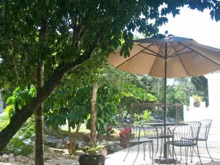 New AKUMAL Family Studio KITCHEN, WIFI & AIRCO - Akumal vacation rentals