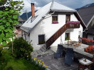 A nice apartment in Bovec with a view of the mountains - Bovec vacation rentals