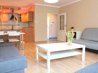 Bright Condo with Internet Access and Dishwasher - Poznan vacation rentals