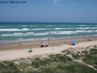 Beachfront PARADISE at it's best! Awesome views! S - South Padre Island vacation rentals