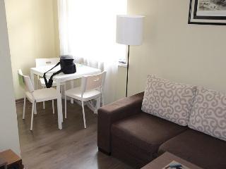 Apartment Kuźnicza/Rynek - Wroclaw vacation rentals