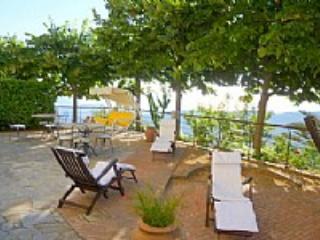 Villa Olivia - Image 1 - Ogliastro Cilento - rentals