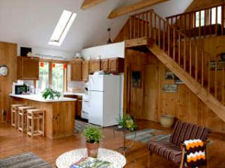 2 bedroom Cabin with Short Breaks Allowed in Phoenicia - Phoenicia vacation rentals