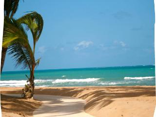 Deluxe Two Bedroom Villa DIRECTLY on the ocean. - Rio Grande vacation rentals