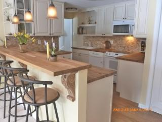 Serene Connecticut Retreat - Luxury 2 bedroom apt - Stamford vacation rentals