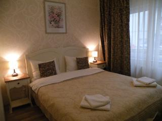 Beautiful one bedroom apartment, downtown city - Bucharest vacation rentals