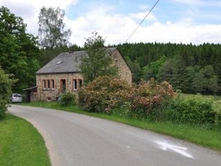 Enjoy luxury in the middle of unpoilt nature - La Roche-en-Ardenne vacation rentals
