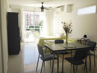 Excelent Studio in Palermo - Great Location - Buenos Aires vacation rentals