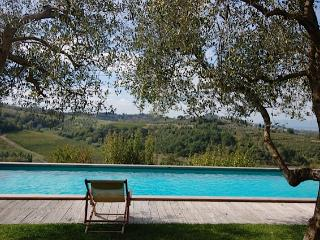 Custode - Cerreto Guidi vacation rentals