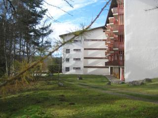 Germany Black Forest, ***apartment Eisenhauer, 625 sqft, Schluchsee - Schluchsee vacation rentals