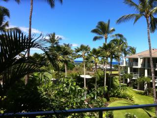 Up Graaded Condo C-205  Partial Ocean View, - Big Island Hawaii vacation rentals