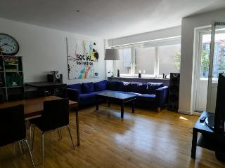 Large Copenhagen apartment at  nice Frederiksberg - Copenhagen vacation rentals