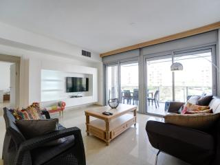 New Luxury 4 Rooms Close to the Beach - Tel Aviv vacation rentals