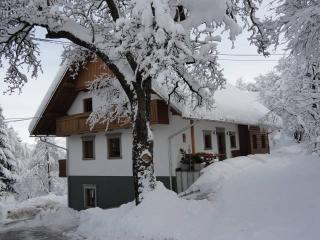 turist farm Dolinar Krainer slovenia bled lake - Bohinjska Bela vacation rentals