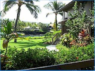 Kanaloa 1br./2ba oceanview NO BOOKING FEE - Image 1 - Kailua-Kona - rentals