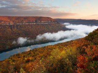 Tennessee River Gorge Island Cabin 2  15 mi. Chatt - Chattanooga vacation rentals