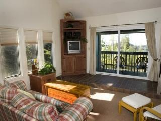 Cedar Village close to the lifts - Brian Head vacation rentals