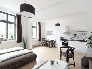 Perfect 1 bedroom Apartment in Leipzig - Leipzig vacation rentals